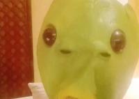 杨紫戴鱼头面具喝水 杨紫称鱼头面具味道太大不建议购买