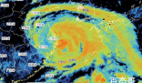 气象记者追风现场崩溃嘶吼 在极端情况下工作也需要注意自身安全