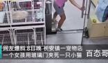 女孩在宠物店故意推门夹死小猫 女孩是故意的吗?