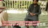 塔利班称进入喀布尔是被迫的 背后的真相让人震惊